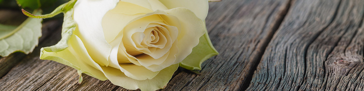 Freedom Funerals is an independent family run Funeral Directors in Colchester, offering bespoke funeral services in Colchester, Essex and Suffolk